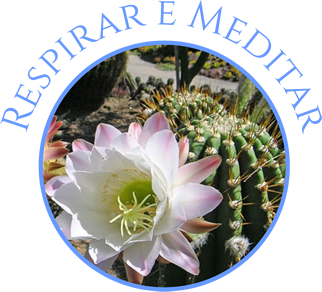 Respirar e Meditar